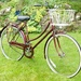 My lovely old bike....