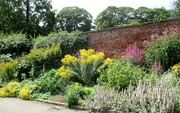 13th Aug 2020 - Walled Garden