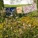 A flower garden on the line