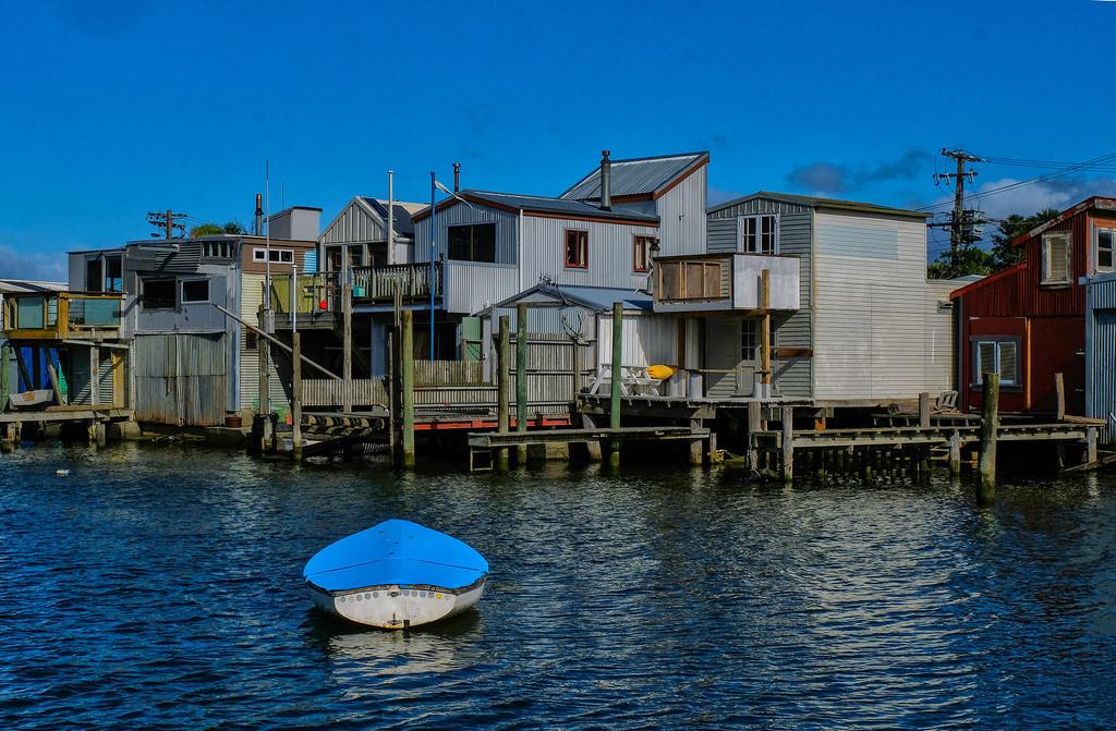 Riverside homes Hikoikoi Petone NZ by maureenpp