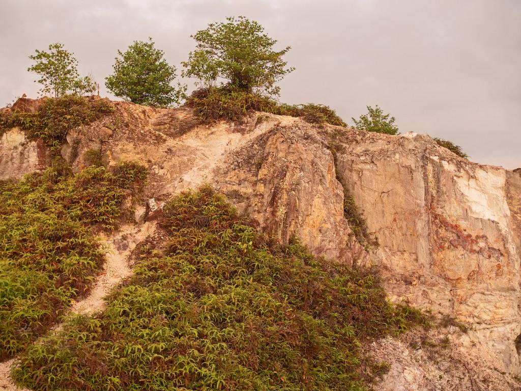Frog Hill Summit by ianjb21