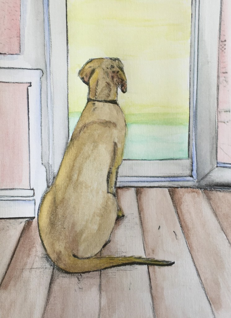 Looking Out 2 by boogie