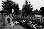 15th Aug 2020 - Dog Walker