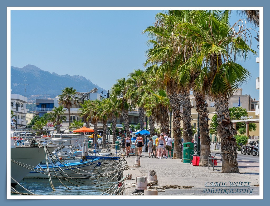Harbour View,Kos by carolmw