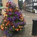 Leominster in bloom  by snowy