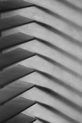 15th Aug 2020 - Blinds