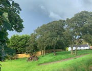 17th Aug 2020 - Stormy skies