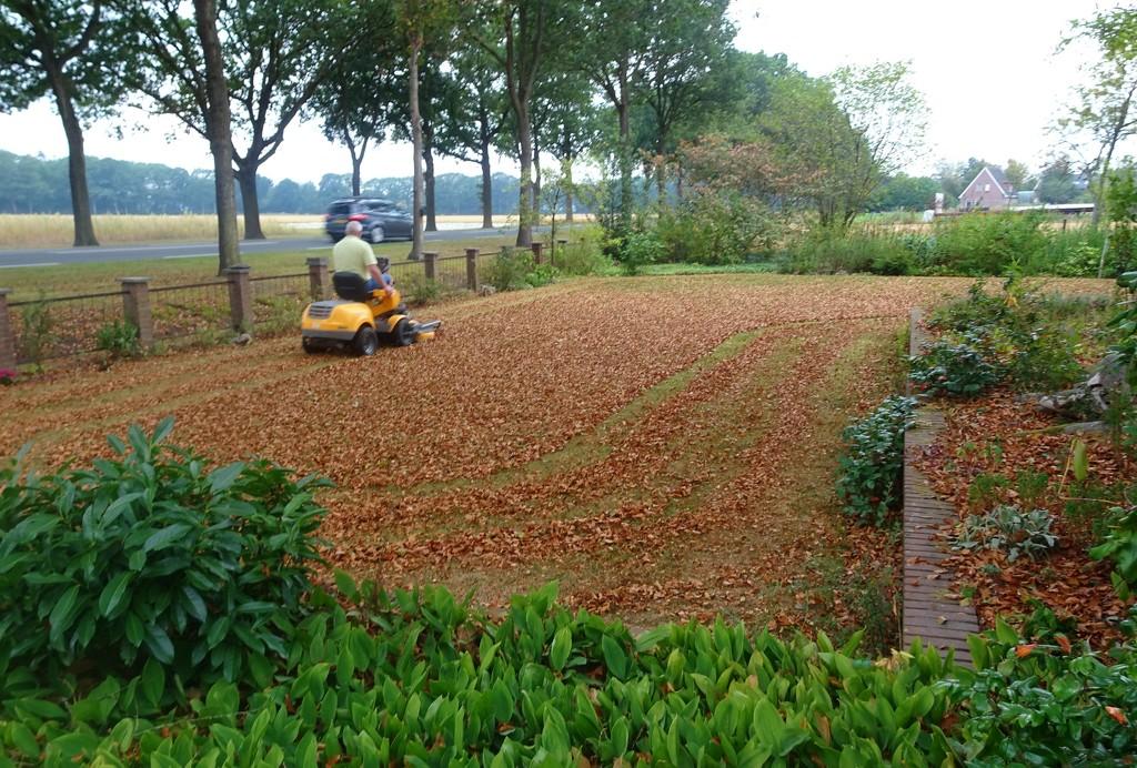 mowing leaves by gijsje