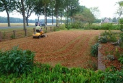 18th Aug 2020 - mowing leaves