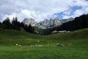 18th Aug 2020 - Landscape with Dent de Savigny