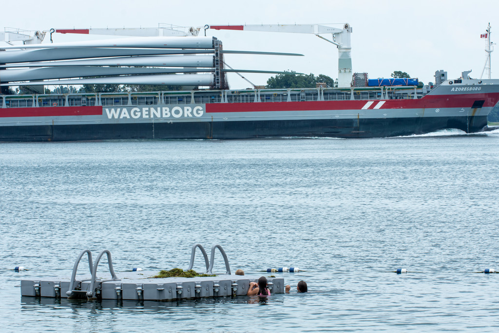 Shipping and Swimming in the St. Lawrence by farmreporter