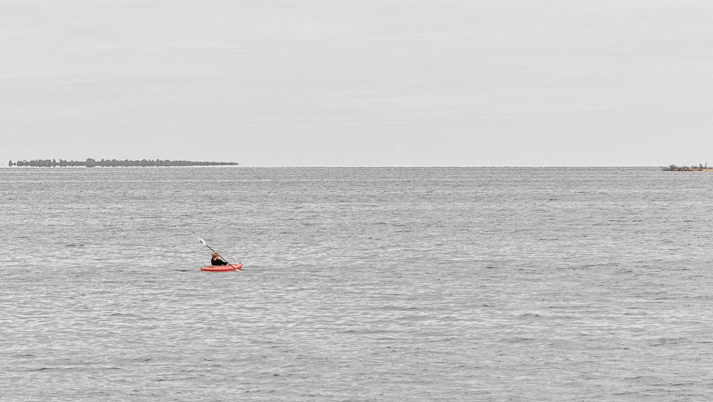 Lone Kayaker on the Open Water by taffy