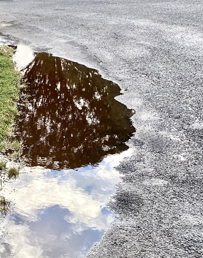 Shadow reflection 2  by fr1da