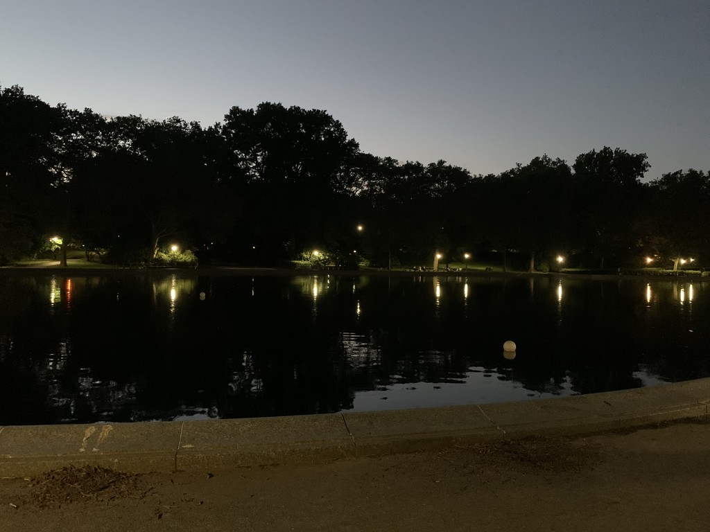 Nighttime in Central Park by blackmutts