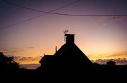 20th Aug 2020 - Criss-Cross Sunset...