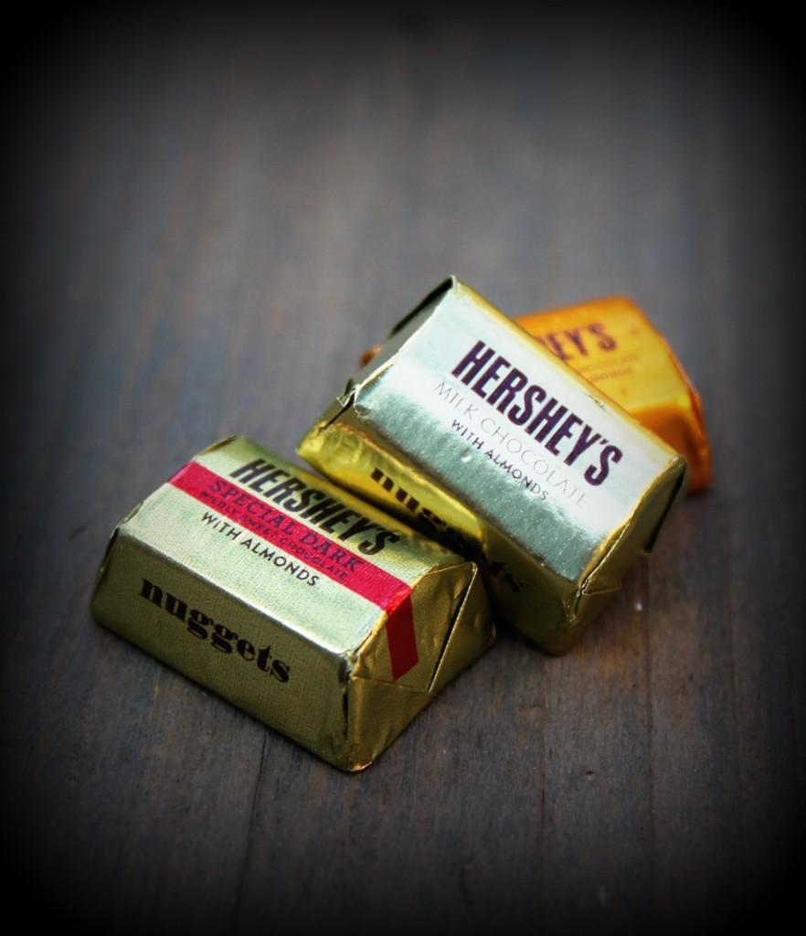 Chocolate by judyc57