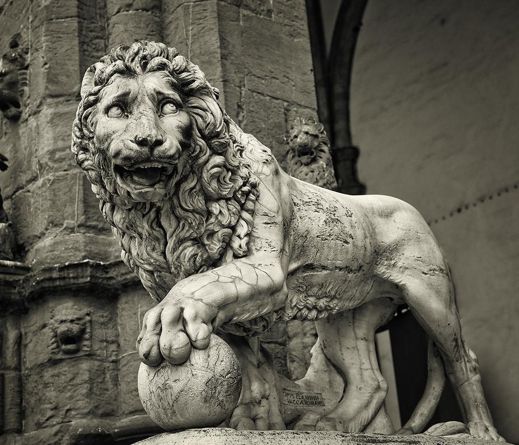Worried Lion  -  Throwback Thursday by gardencat