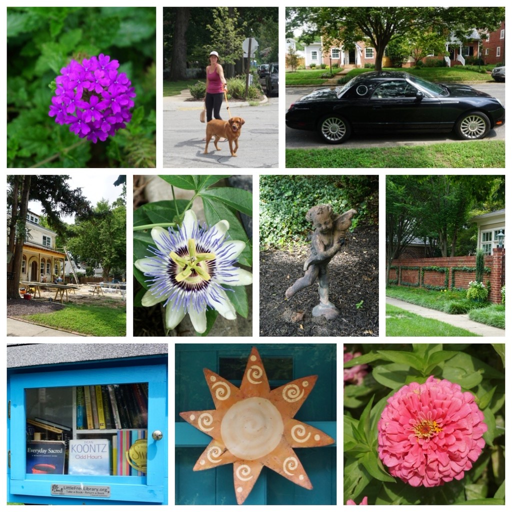 A Neighborhood Walk by allie912