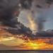 Wild Skies by taffy
