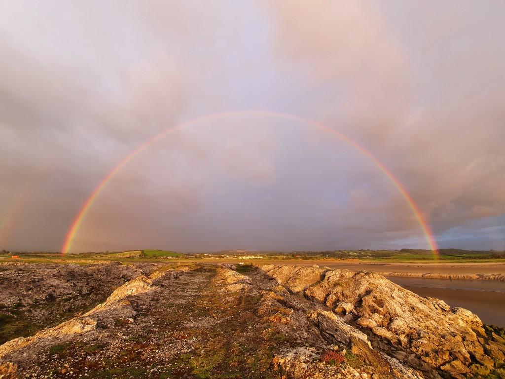 Rainbow by pinkpaintpot