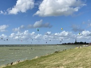 22nd Aug 2020 - What a joyful, windy day :)