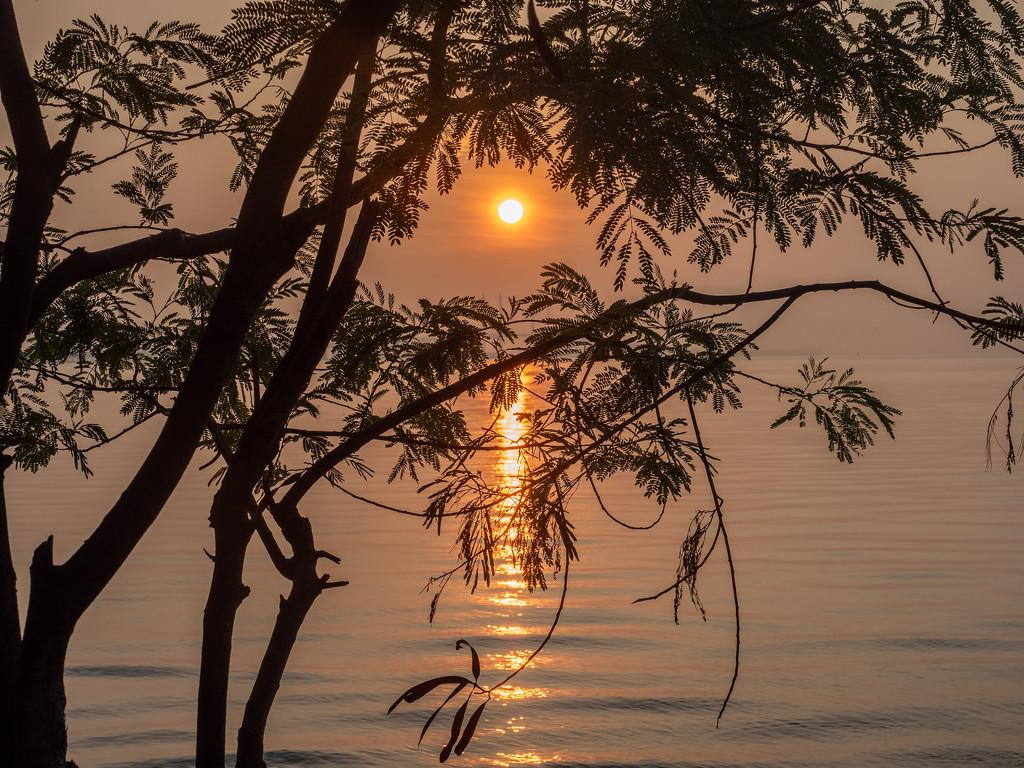 Sunrise South-Bay. by ianjb21