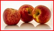 22nd Aug 2020 - An Apple a Day ...