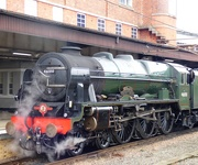 23rd Aug 2020 - Royal Scot
