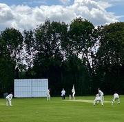 19th Aug 2020 - Cricket