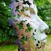 Leaf Face by carole_sandford