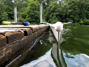 11th Aug 2020 - Rowing shell: A different view