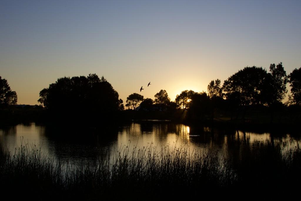 Sunset Over Harmony Park DSC_0704 by merrelyn