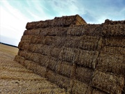 15th Aug 2020 - Giant Haystacks