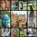 Doddington Hall Sculptures