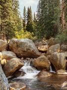 24th Aug 2020 - Along Guanella Pass in Colorado