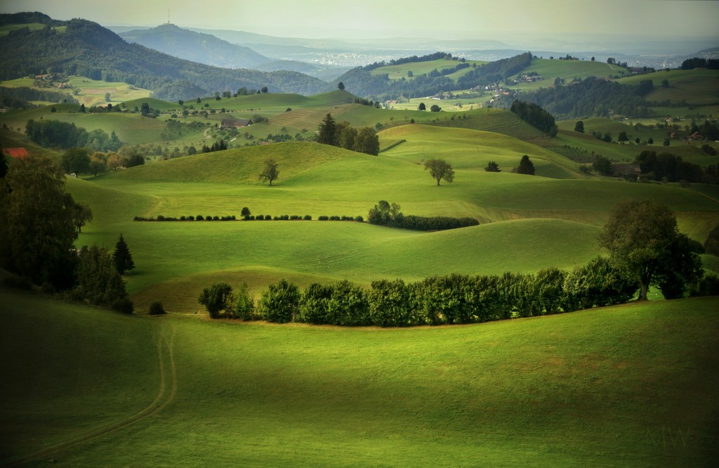 2020-08-27 smooth green hills by mona65