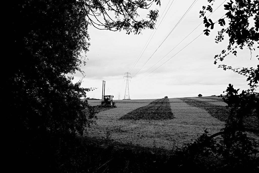 Ploughing Landscape by allsop