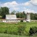 Farm scene by mittens