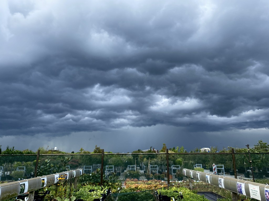 Threatening clouds while buying some plants by stimuloog