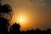 28th Aug 2020 - Sunrise