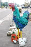 28th Aug 2020 - a little Big Chicken