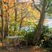Fall Look by seattlite