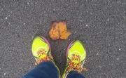 29th Aug 2020 - Evidence of Autumn
