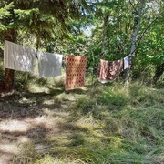 29th Aug 2020 - Country washing