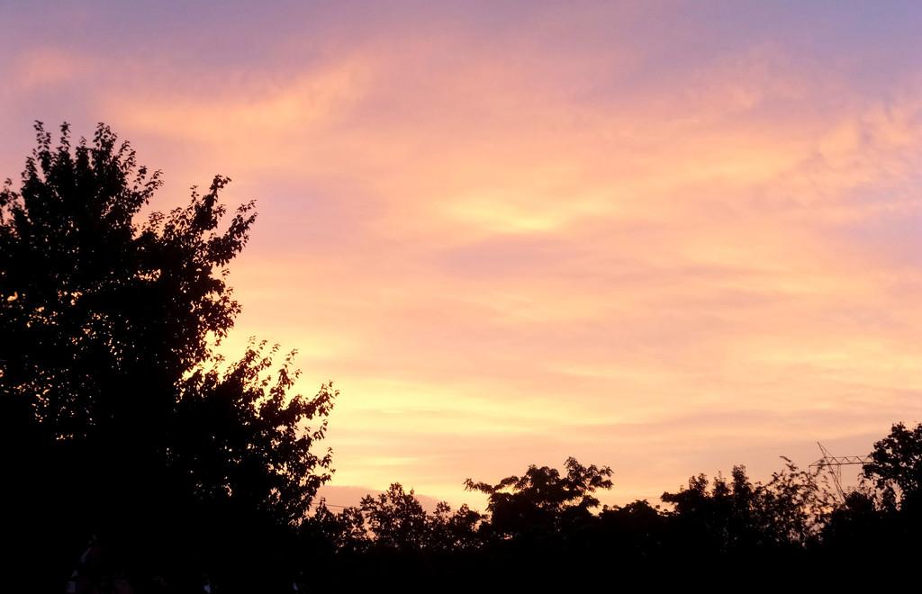 Rising Sun by linnypinny