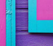 29th Aug 2020 - 0829 - Vibrant paint job
