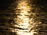 30th Aug 2020 - bokeh on water