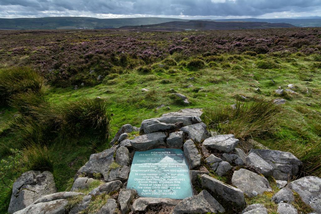 Foxhunter's grave by rumpelstiltskin