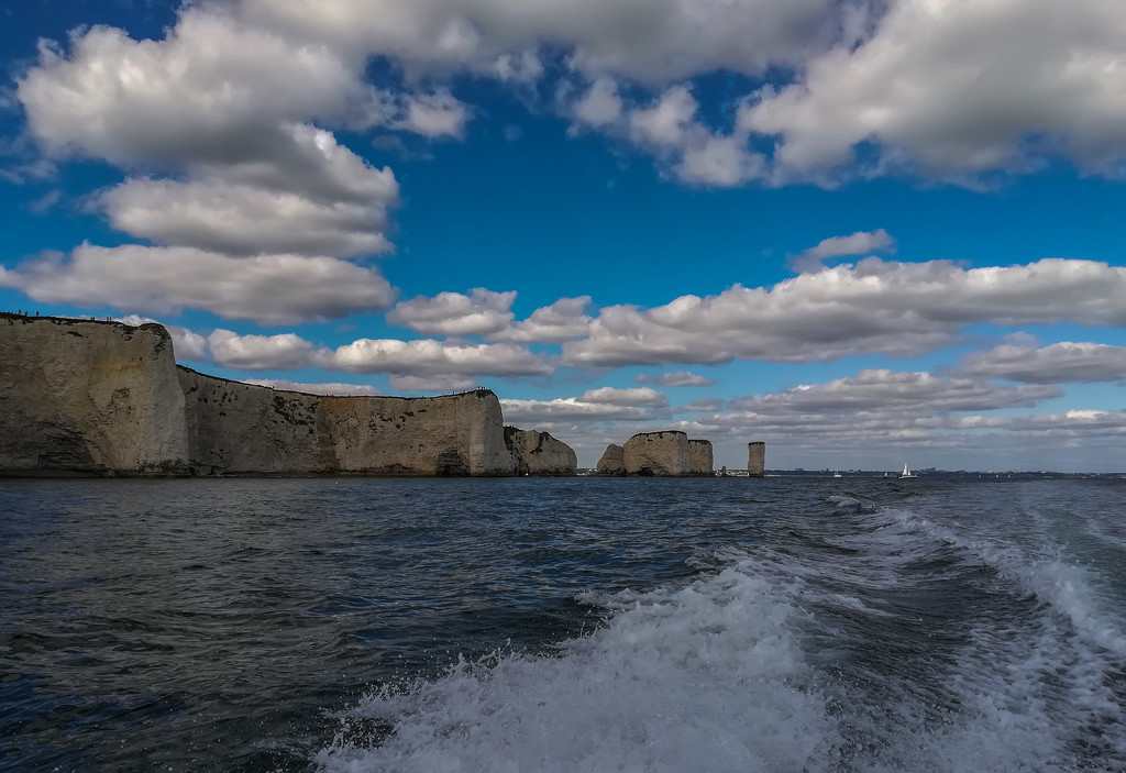Old Harry Rolls! by pasttheirprime