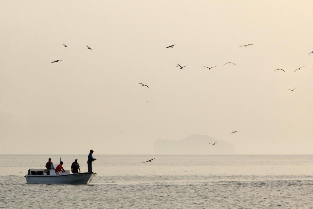 Fishing by ingrid01